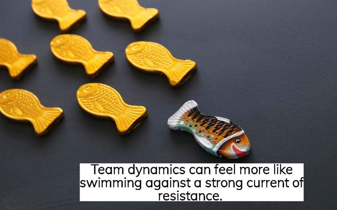 So how can you make your team dynamic?